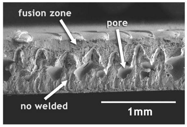 تصویر میکروسکوپ الکترونی