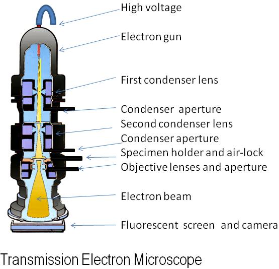دیاگرام یک میکروسکوپ الکترونی